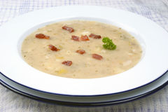 potato soup with some herbs Royalty Free Stock Image