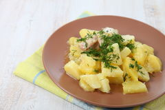 Potato stew with chicken Royalty Free Stock Photography