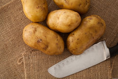 Potato still lift on sack background Royalty Free Stock Image