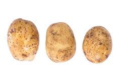 Potato on the table Stock Photos