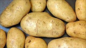 Potato texture stock video