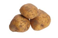 Potato tuber Stock Photos