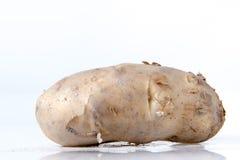 Potato tuber Royalty Free Stock Image
