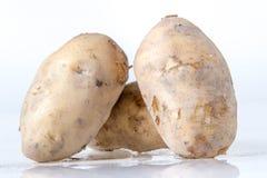 Potato tuber Stock Images
