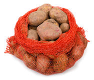 Potato tubers Stock Image