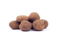 Potato tubers Stock Photography