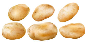 Potato tubers on a white background Stock Photos