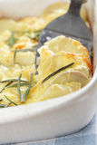 Potato and turnip gratin Royalty Free Stock Images