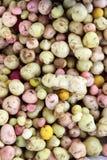 Potato Varieties Stock Photos