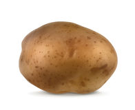 Potato vector illustration Royalty Free Stock Images