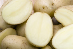 Potato vegetable Royalty Free Stock Images