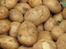 Potato vegetables food. Potato Solanum tuberosum vegetables vegetarian and vegan food on display for sale royalty free stock photos
