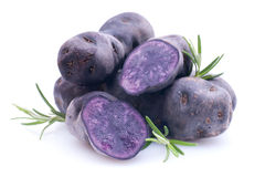 Potato Violette Royalty Free Stock Photography