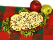 Potato waldorf salad Royalty Free Stock Image