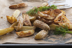 Potato Wedges. From the oven. Dill at the top. Spiced with sea salt stock images