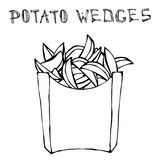 Potato Wedges in Paper Box. Fried Potato Fast Food in a Package. Realistic Hand Drawn Doodle Style Sketch.Vector Stock Photography