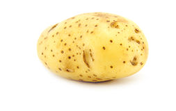 Potato on white Royalty Free Stock Image