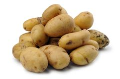Potato on white. Photo of lots of Potato on white royalty free stock photography