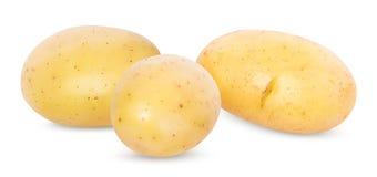 Potato on white royalty free stock images