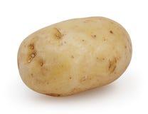 Potato  on white background Stock Photography