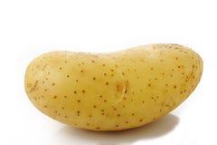 Potato on white background Royalty Free Stock Images