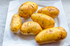 Potato on white plate. Six unpeeled raw potatoes on a white plate Royalty Free Stock Images