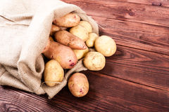Potato on wood background Stock Photography