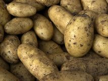 Potatoe Royalty Free Stock Photos