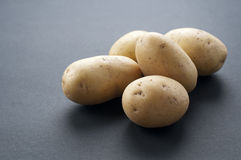 Potatoe. Fresh potato with gray background Royalty Free Stock Photography