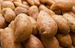 甜Potatoe 免版税库存照片