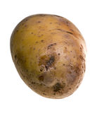 Potatoe Stock Image