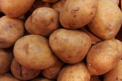 Potatoe background Stock Image
