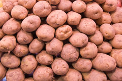 Potatoe background Royalty Free Stock Photos