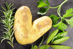 Potatoe love Royalty Free Stock Photo