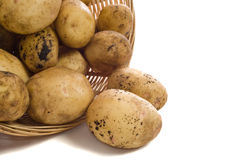 Potatoes. A pile of garden potatoes shot on a white background Royalty Free Stock Photo