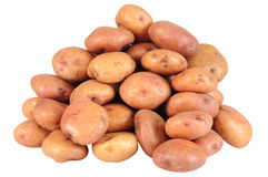 Potatoes. Fresh potatoes, isolated over white background Stock Photos