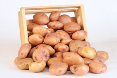 Potatoes. Fresh potatoes, isolated over white background Stock Photography