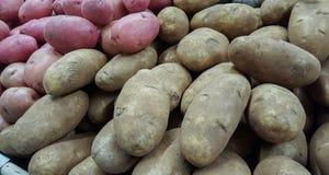 potatoes photographie stock libre de droits
