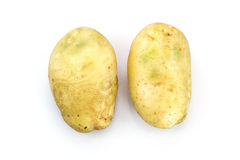Potatoes. Two potatoes isolate on a white background Stock Images