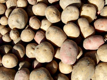 Potatoes. Some potatoes exposed on market ready to be sell Stock Photo