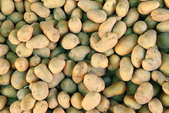 Potatoes. Image of fresh organic potatoes in the market stock photos
