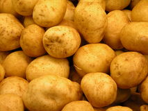 Potatoes. A bin full of russet potatoes stock image