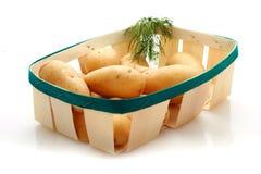 Potatoes. Stock Photo