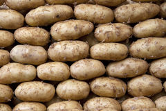 Potatoes. Lined on a counter of open market Royalty Free Stock Photos