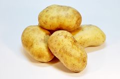 Potatoes. Few clean similar shaped and sized potatoes stock photo
