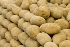 Potatoes. A group of fresh potatoes well organized Royalty Free Stock Image