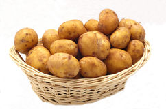 Potatoes. Fresh potatoes in a basket isolated on white royalty free stock image