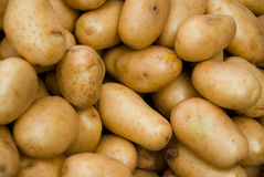 Free Potatoes Stock Image - 2803841