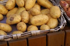 Potatoes. Basket of Potatoes in a small village in Provence Royalty Free Stock Photos