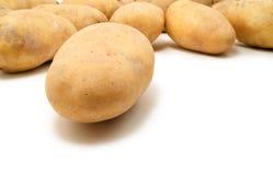 Potatoes. Raw potatoes on white background stock photos